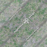 HFDJT_GrassPatchy04_Lge.jpg