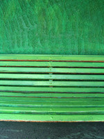 green wall with a bench