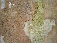 seamless grunge wall texture