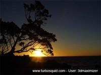 New Zealand landscape 036.jpg