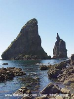 New Zealand landscape 046.jpg