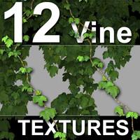 12_Vine_Textures.zip
