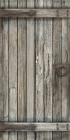 Rustic_Door_202.bmp