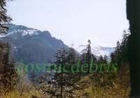 Sequoia National Park 01.jpg
