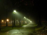 Night Alley in Fog