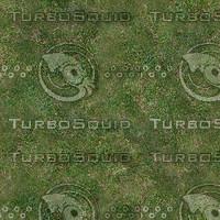 grass1_1024x.bmp