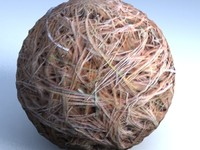 pine nettles.jpg