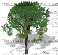 pine.psd