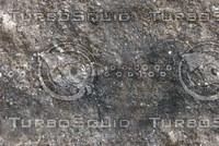 stone9.jpg