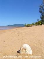 Australia landscape 015.jpg
