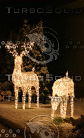 Greeting card perfect reindeer of light