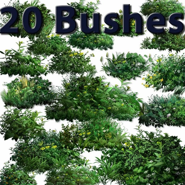 Collection_20_Bushes_thumb.jpg