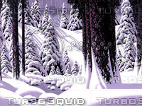 Forest Snow Scene / S-013