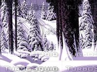 Forest Snow Scene / S-013