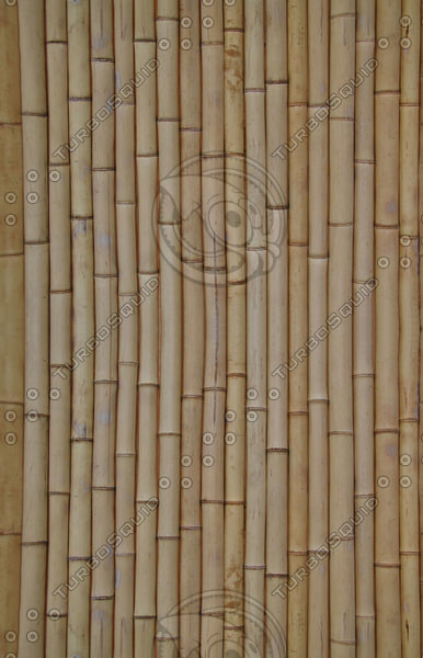 bamboo_1_preview.jpg