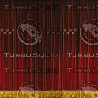 Screen Curtain for Theatre High Res.jpg
