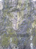 graveback2.jpg
