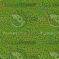 greenFence_tileable512.jpg