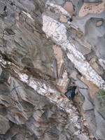 Rock Texture - Metamorphic 3