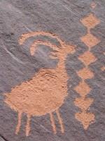 Rock Texture - Petroglyph 8