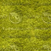 reptile 01.png