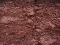 Rock Texture - Shale1