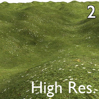 Ultimate Grass 2 High Resolution.jpg