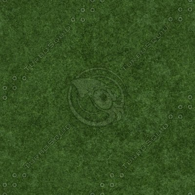 BLX_Grass(pic1).jpg