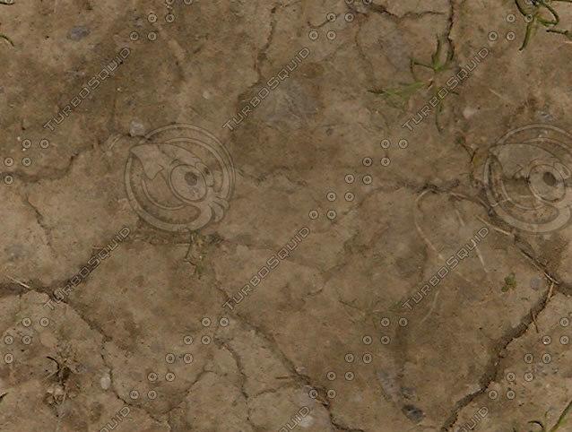Dry_cracked_dirt.jpg