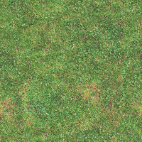 Grass01.zip