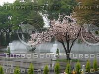 Orient 874 Kokyogaien National Garden, Tokyo.JPG