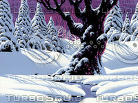 Oak Tree in Winter / S-014