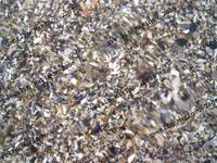 SeaWater.jpg