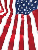 USFlagLBG03.jpg