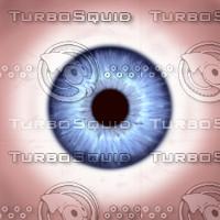 eye_02.jpg