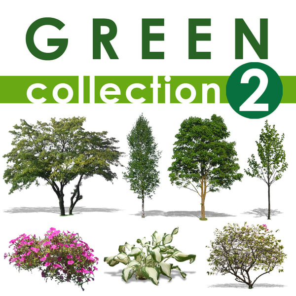 green collection 2.jpg