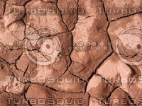 Rock Texture - Mudcracks 4