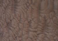 Rock Texture - Ripples 1