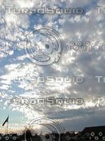 scrapes0169.jpg