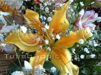 stock_photo_flower04_bySentidos.JPG
