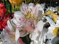 stock_photo_flower06_bySentidos.JPG