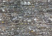 texture_wood01_bySentidos.JPG