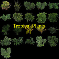 Tropical Plants collection #1