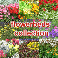 flowerbeds collection