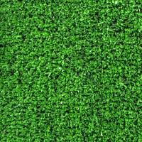 Grassy-Carpet