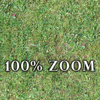 Medium resolution Grass ground 01