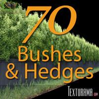 Bushes_Texturama.zip