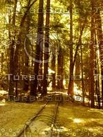 Roaring Camp Railroads - The Narrow Gauge