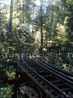 Roaring Camp Railroads - The Old Tressle