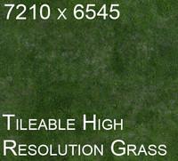 QPgoodgrass.jpg
